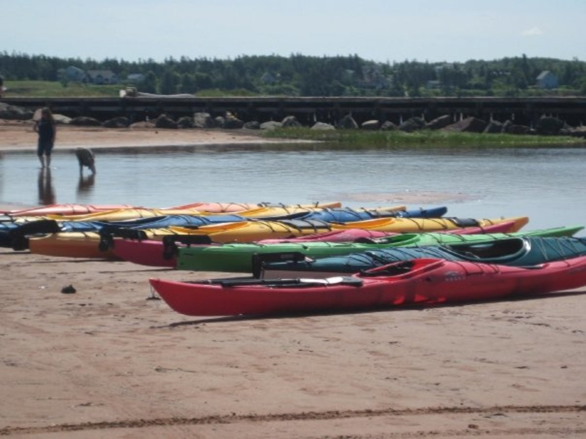 Colourful kayaks line the beach in PEI.