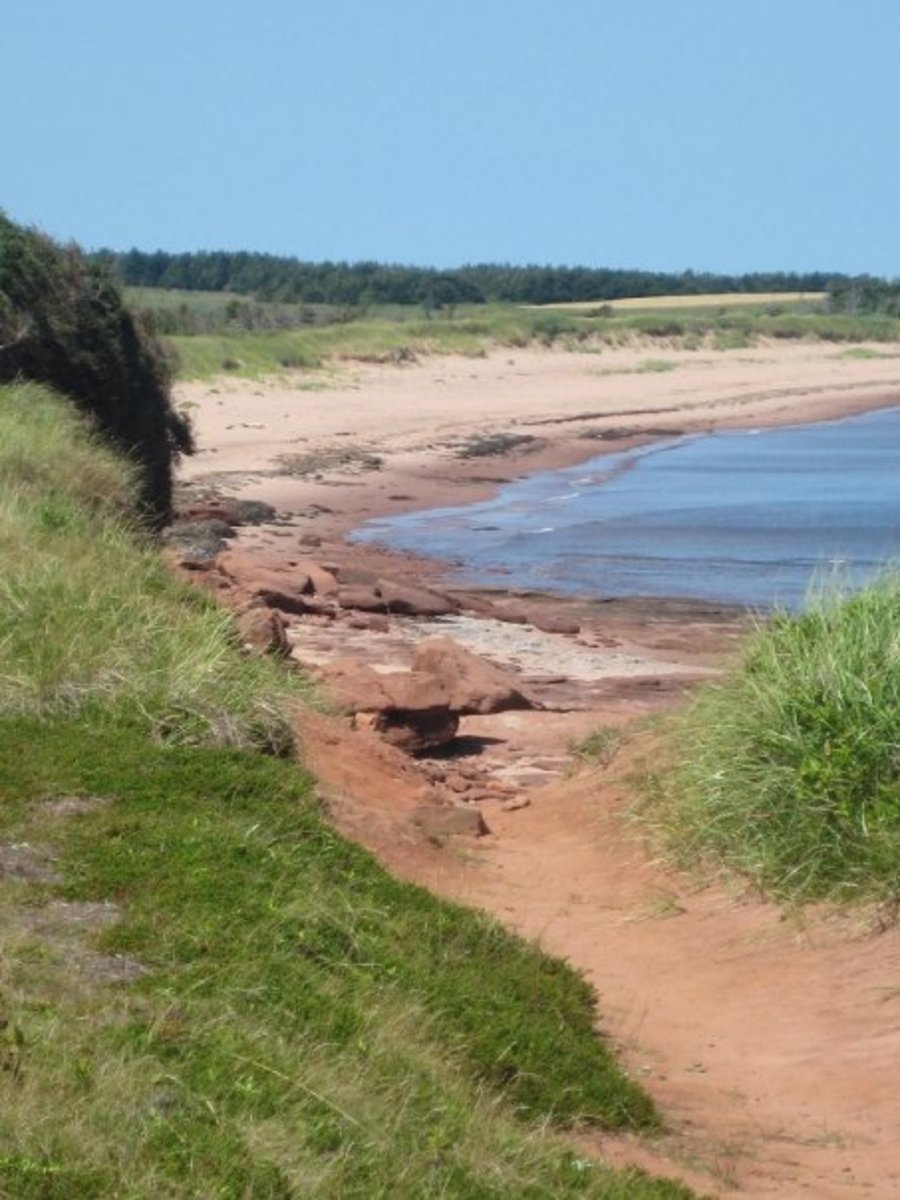 Walking path to the beach near East Point, PEI