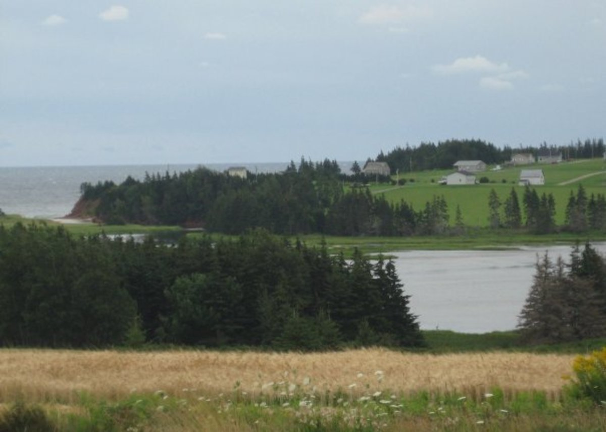 Rolling countryside in PEI