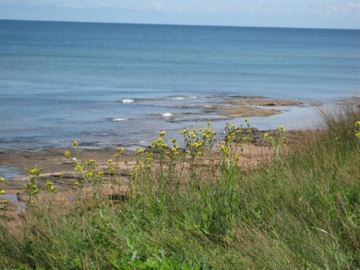 Natural beauty of Prince Edward Island