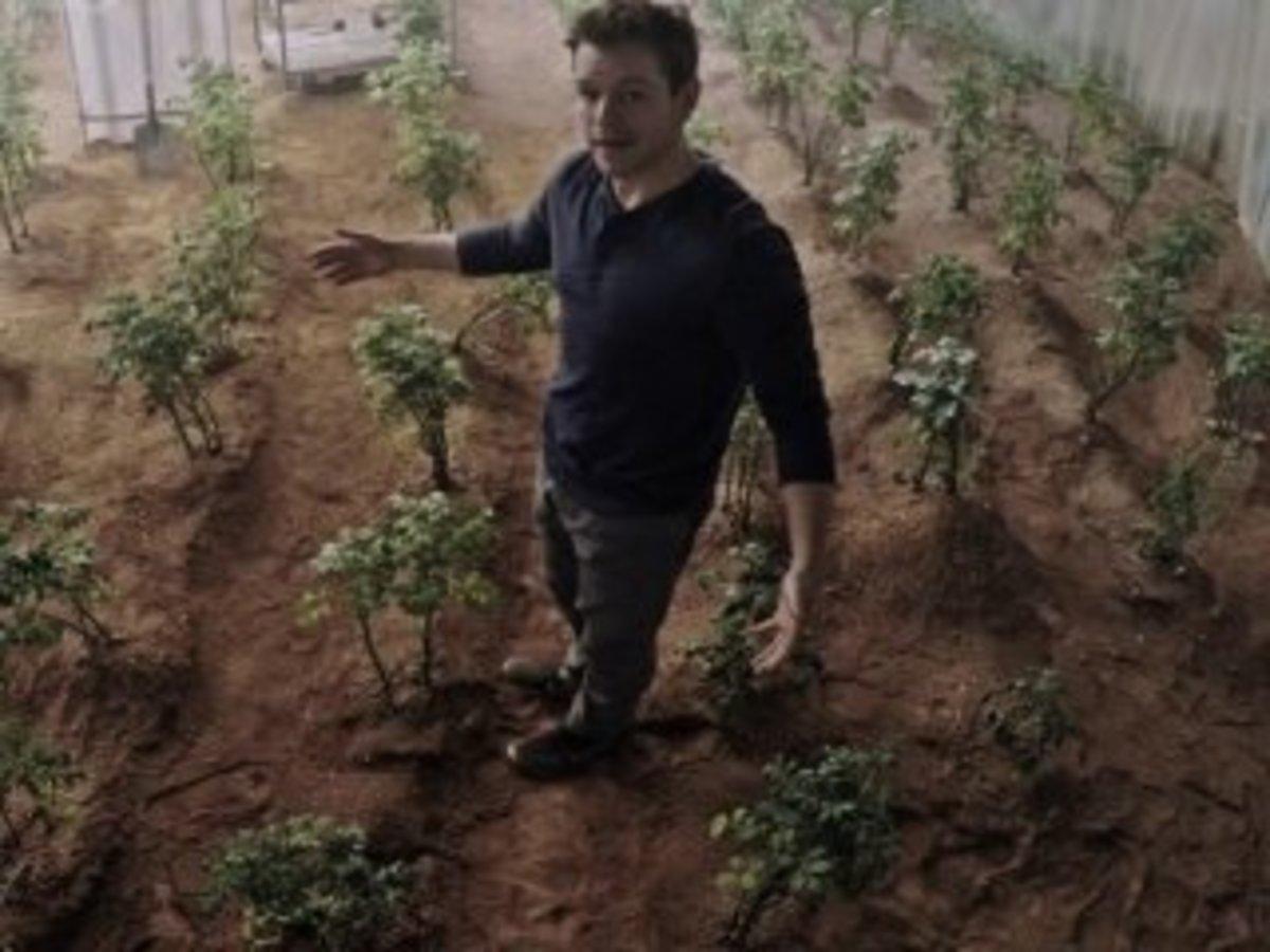 Time to grow the potatoes