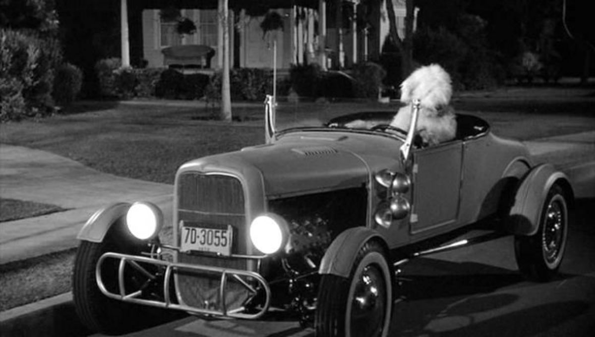 film-review-the-shaggy-dog-1959
