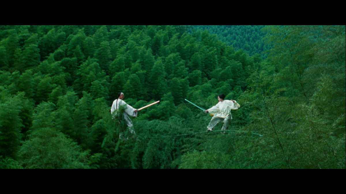 Scenes like this from Crouching Tiger Hidden Dragon to western eyes seem far fetched.  This particular film was one of the few times it was embraced.