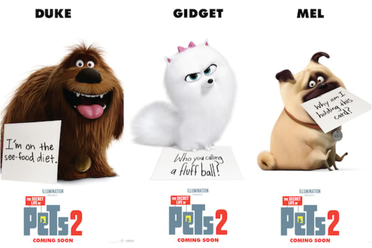 the-secret-life-of-pets-2-review