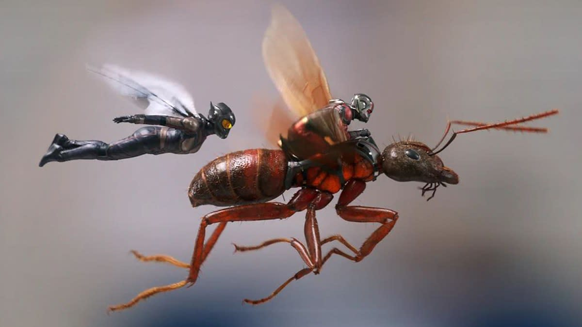 ant-man-and-the-wasp-infinity-saga-chronological-reviews