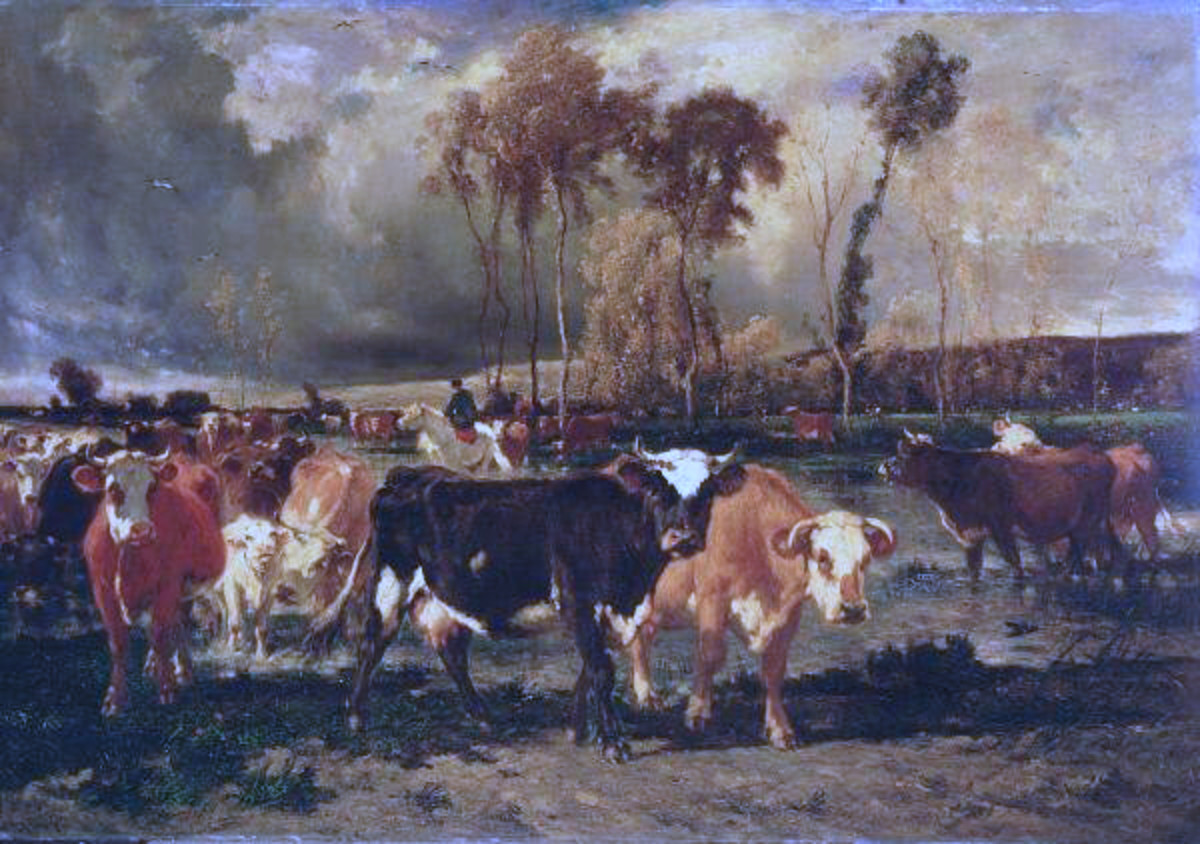The Return of the Herd by Émile van Marcke, 19th Century, 74½ x 106 in. (189.2 x 269.2 cm), oil on canvas, Ringling Museum
