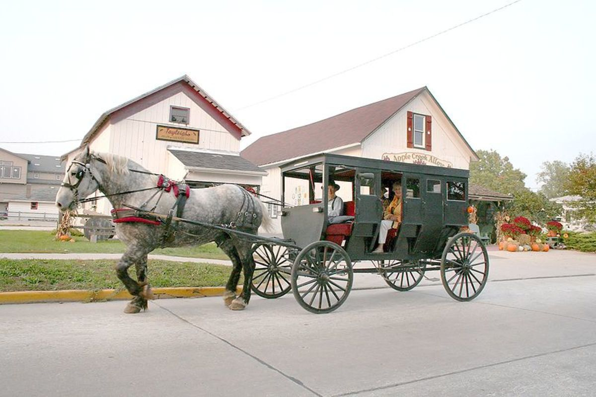 Amish horse and buggy at Shipshewana.