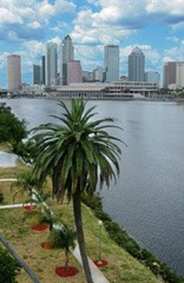 Downtown Tampa Skyline  www.flickr.com