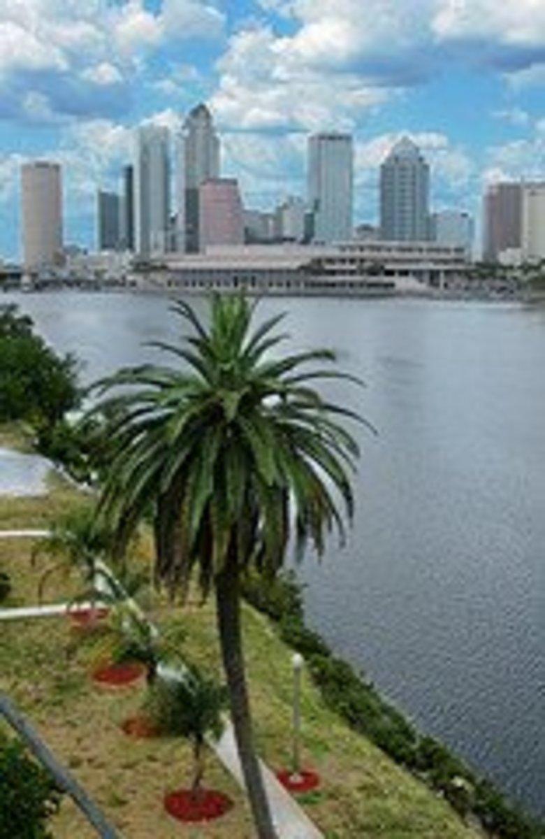 Downtown Tampa Skyline  www.flickr.com