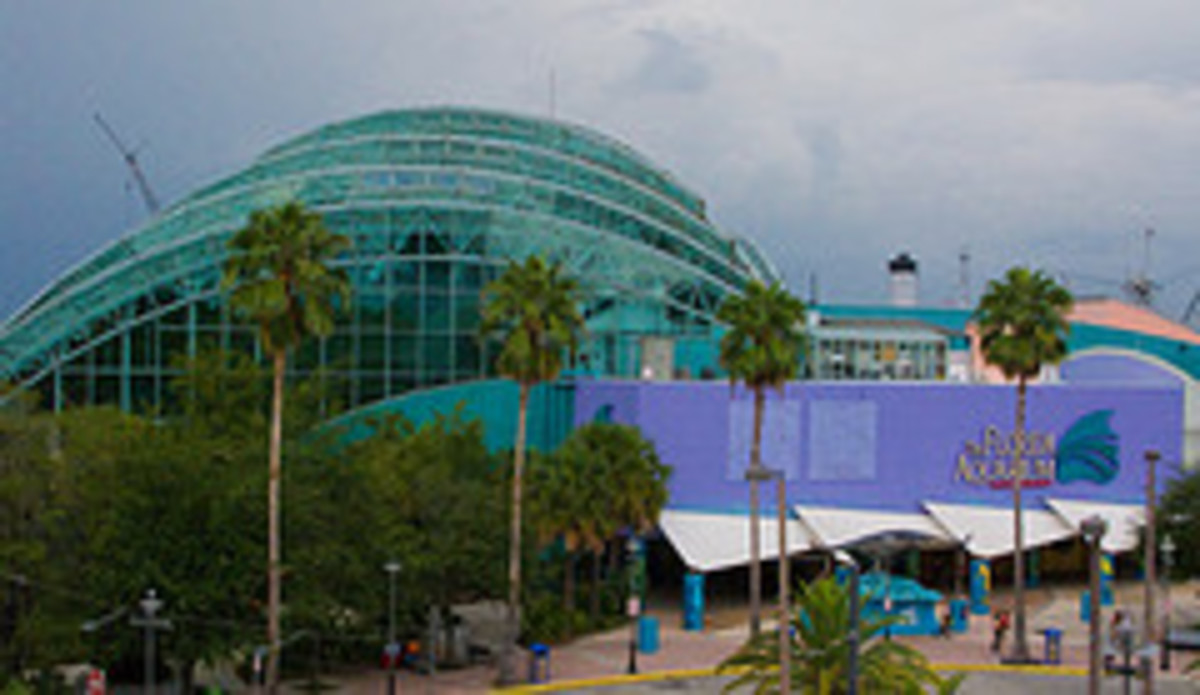 The Florida Aquarium www.flickr.com