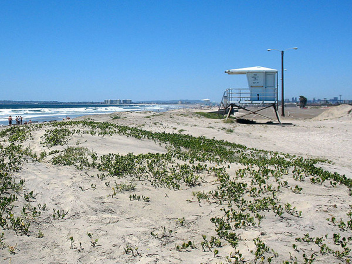 Silver Strand State Beach, Coronado Island, California