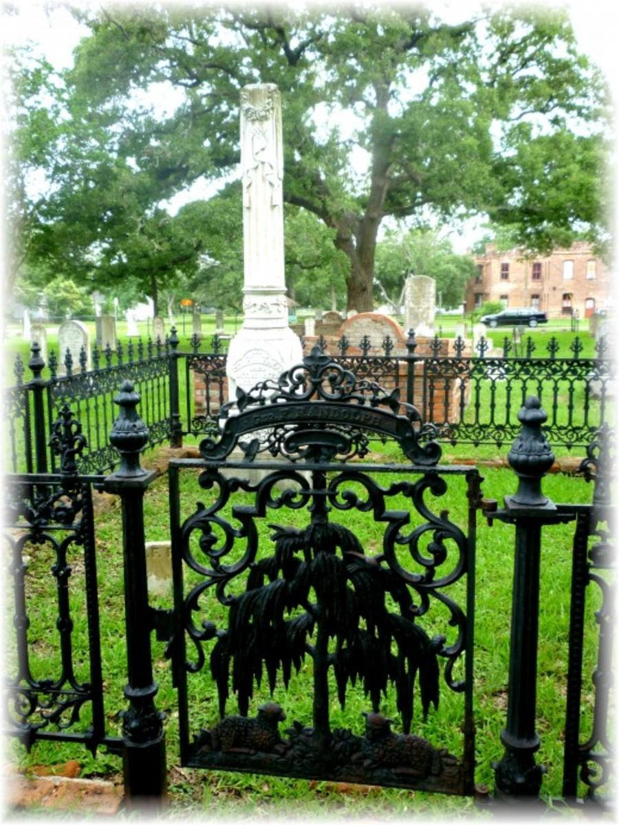 Beautiful iron gate with tree and sheep