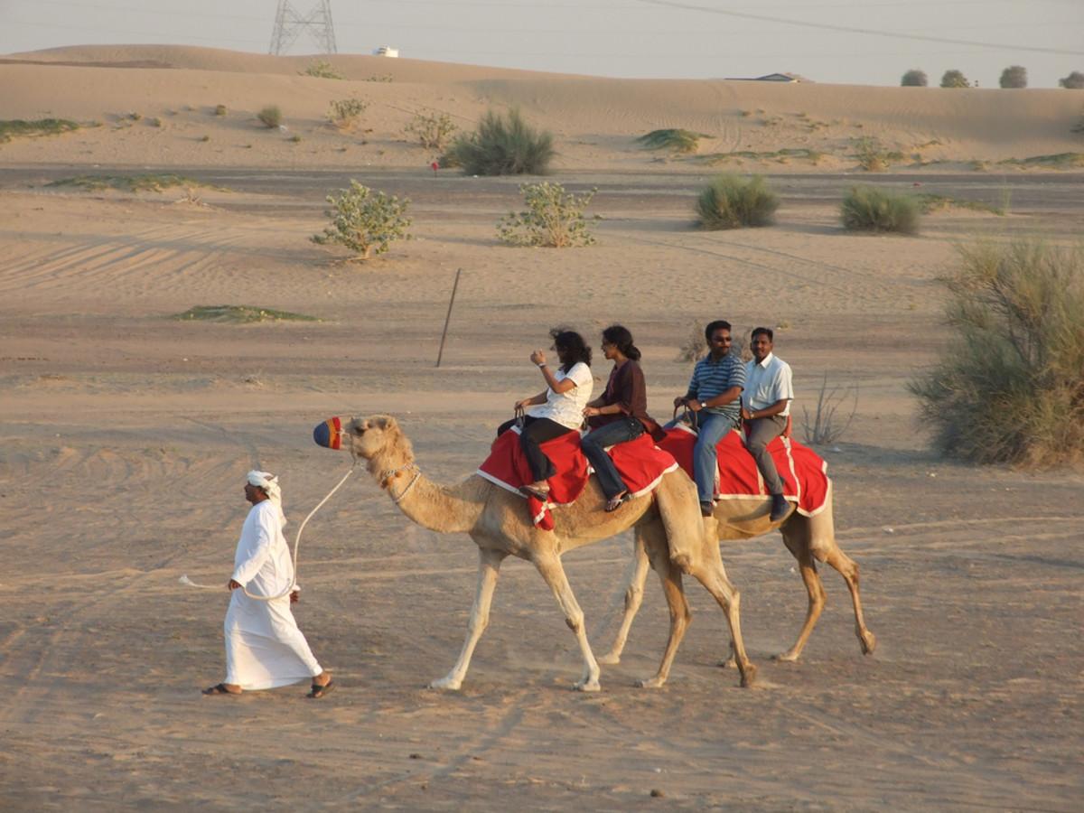 The Dubai desert