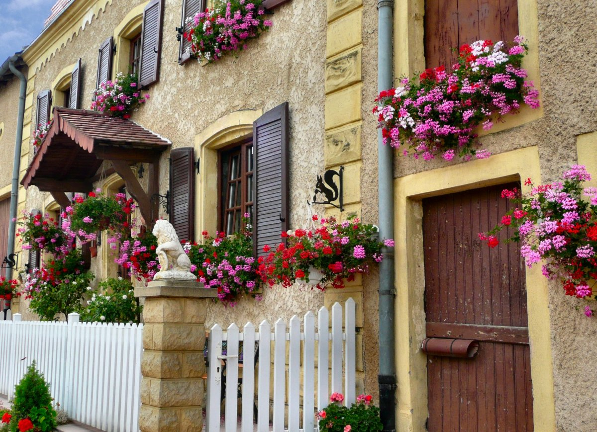 The combination of flowers against the harsh stone and masonry is really lovely!