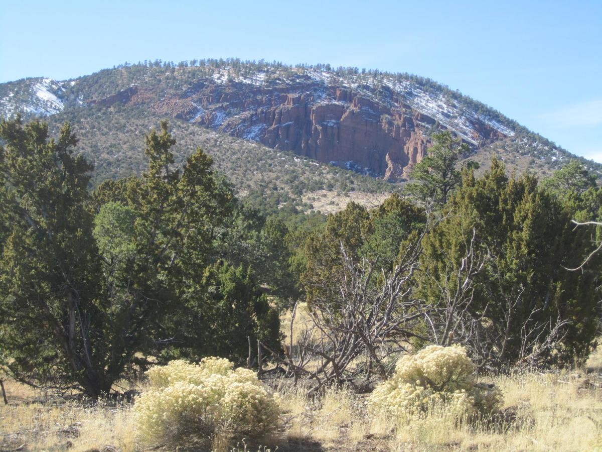 Red Mountain from a distance