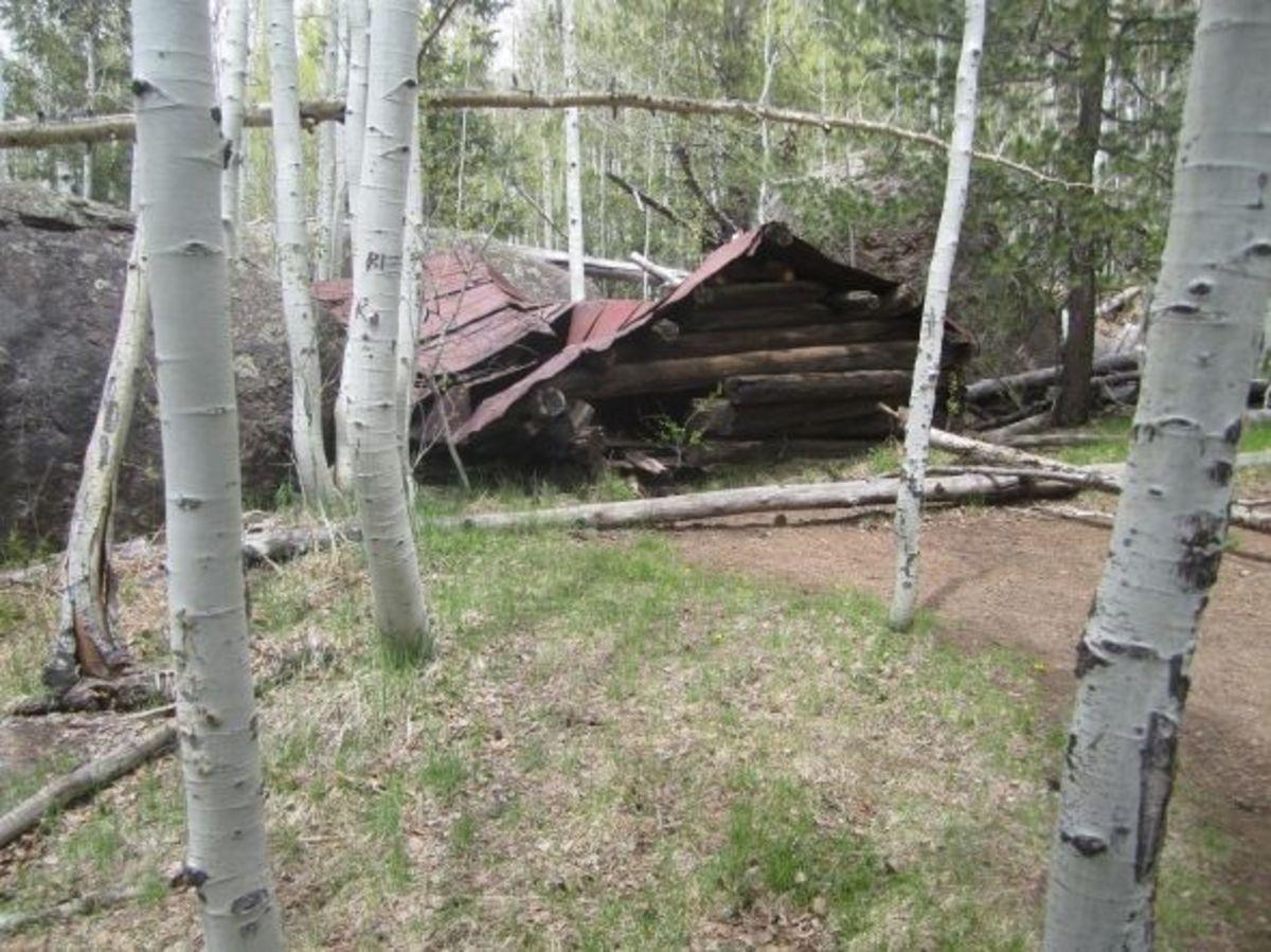 Veit Springs Trail / Lamar Haines Loop