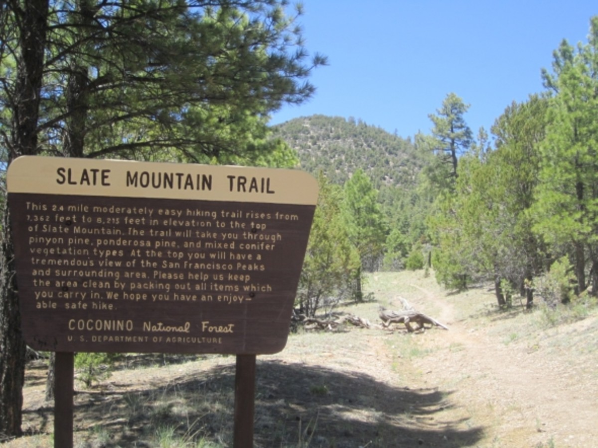 Slate Mountain Trail in Flagstaff