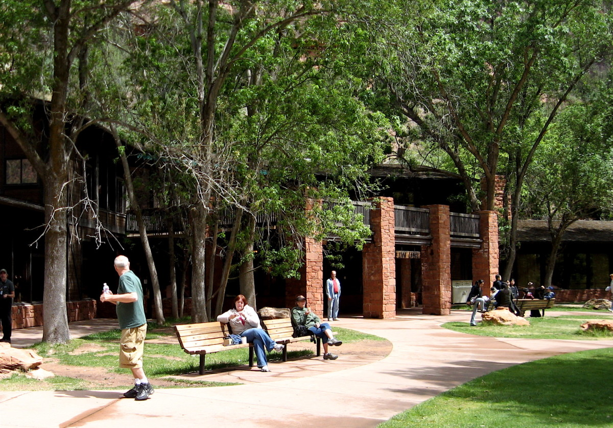 Zion Lodge is nestled in the meadow trees on the floor of the canyon.