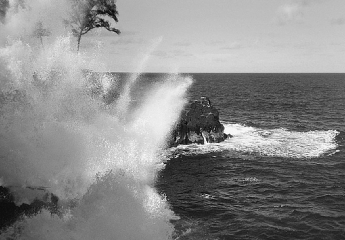 hidden-hawaii-the-haunted-mackenzie-state-park-in-opihikao-on-the-big-island