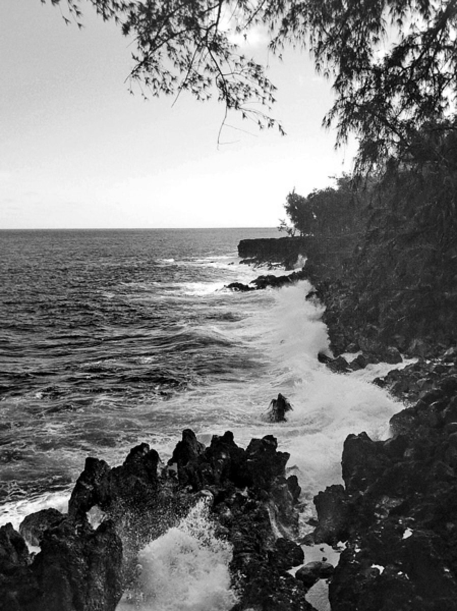 hidden-hawaii-the-haunted-mackenzie-state-park-in-opihikao-on-the-big-island