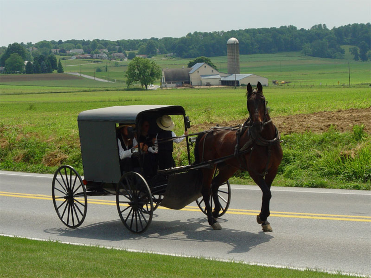 Amish in Lancaster, Pennsylvania.