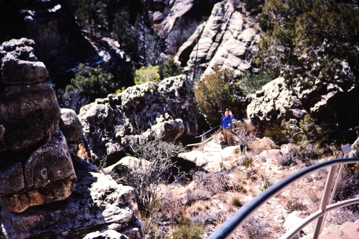 My hubby on the Island Trail at Walnut Canyon...shows some of the many steps taken while descending into the canyon.