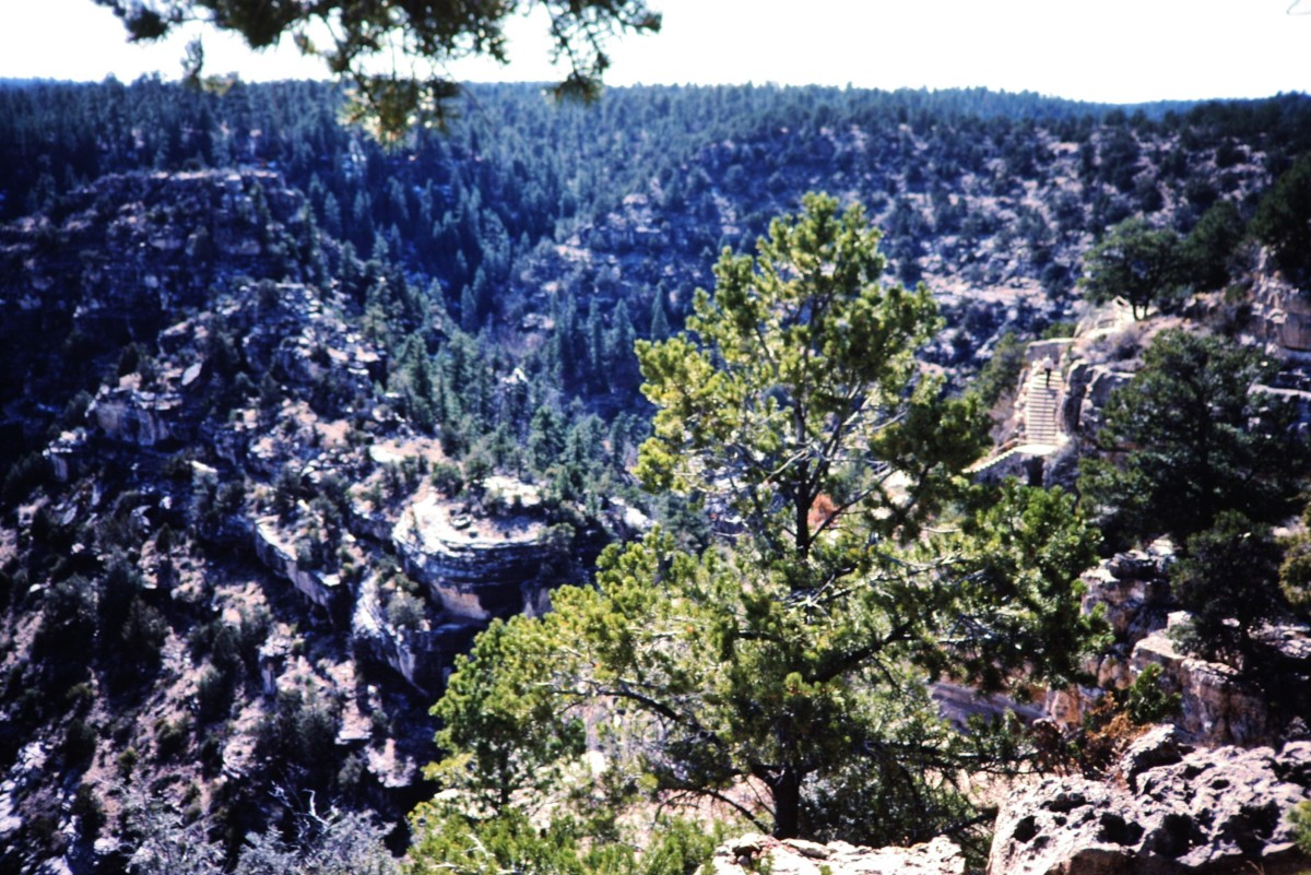 Overview of Walnut Canyon