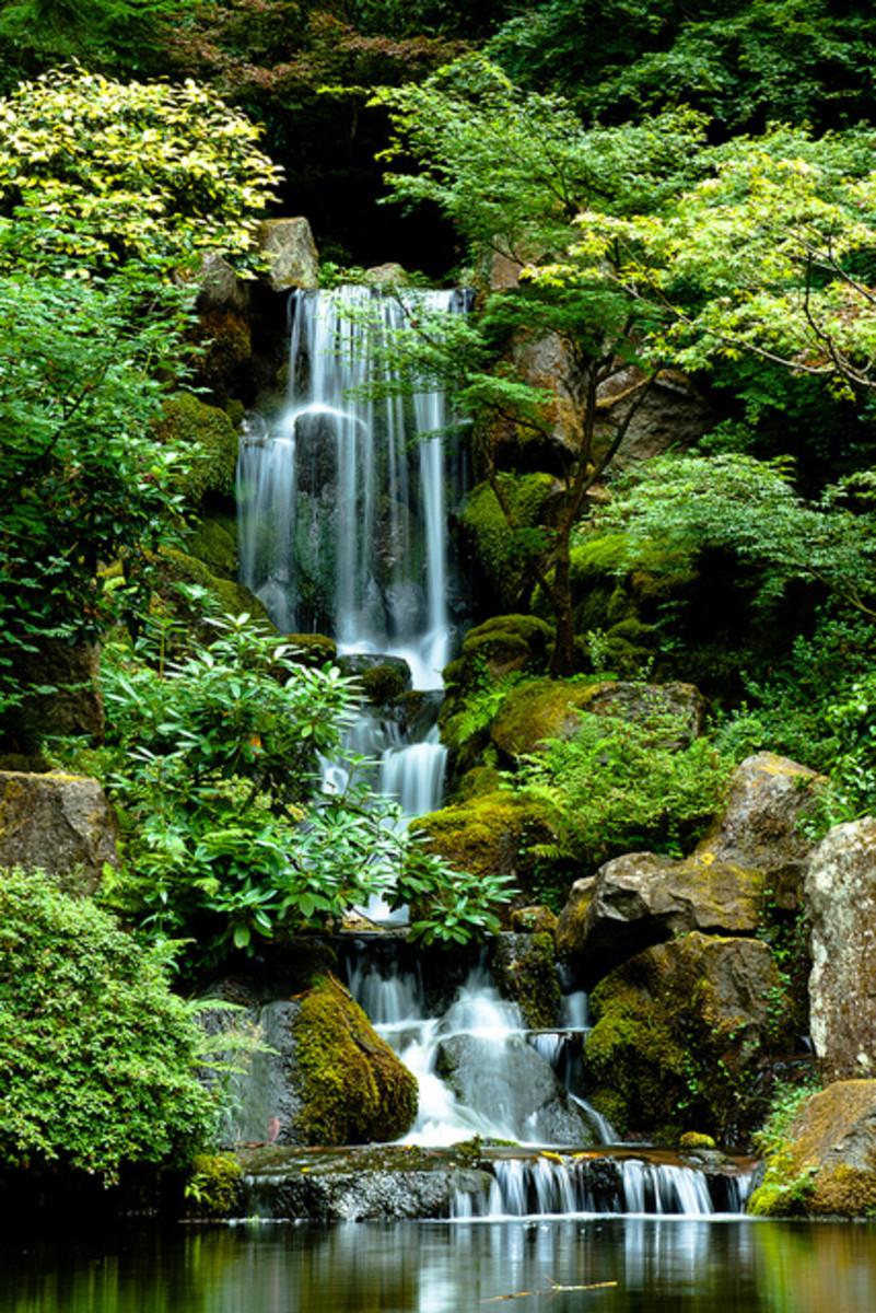 Flickr photo courtesy of blarggg