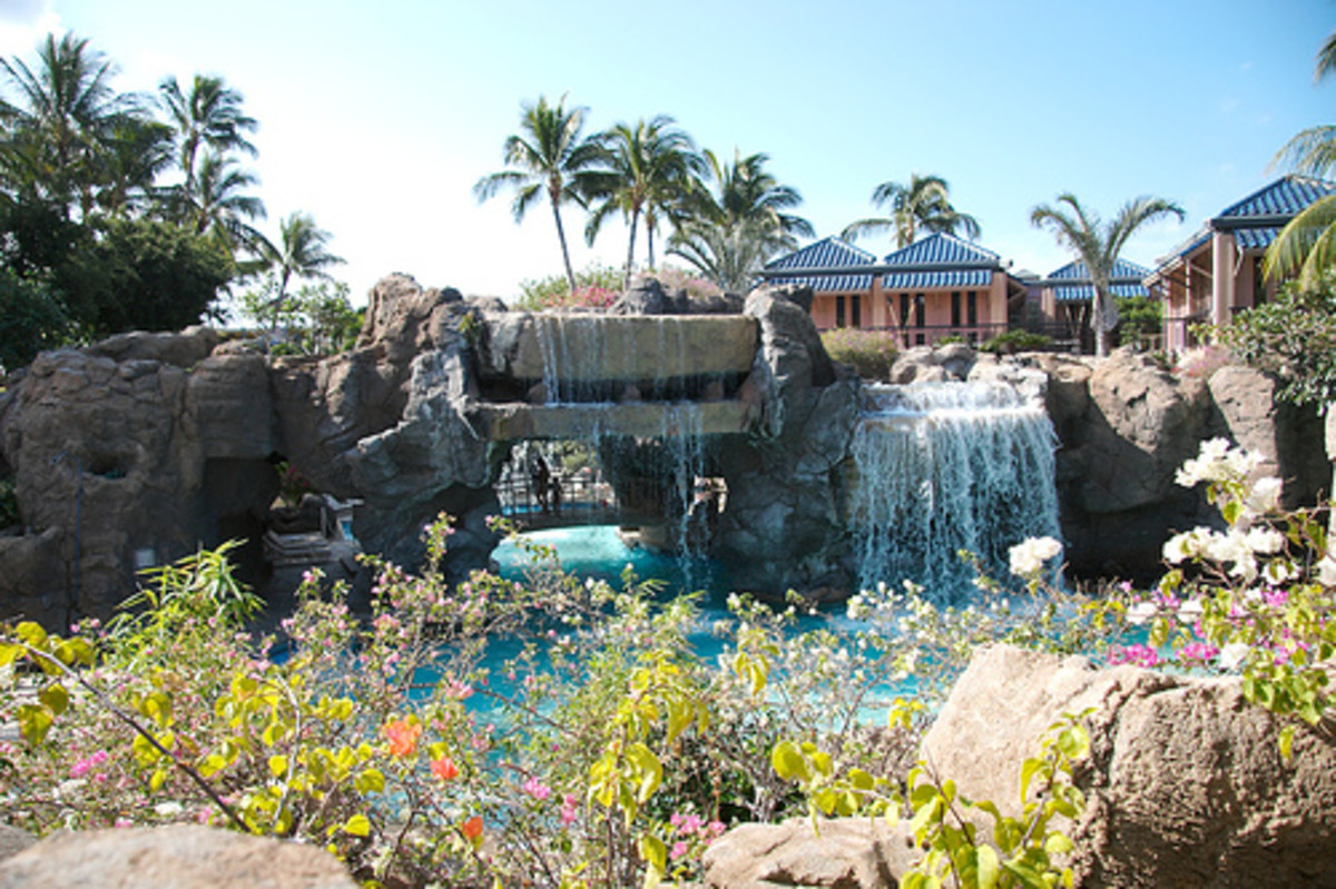 The Hilton Waikoloa Village has three water slides, dolphins, a boat and much more.