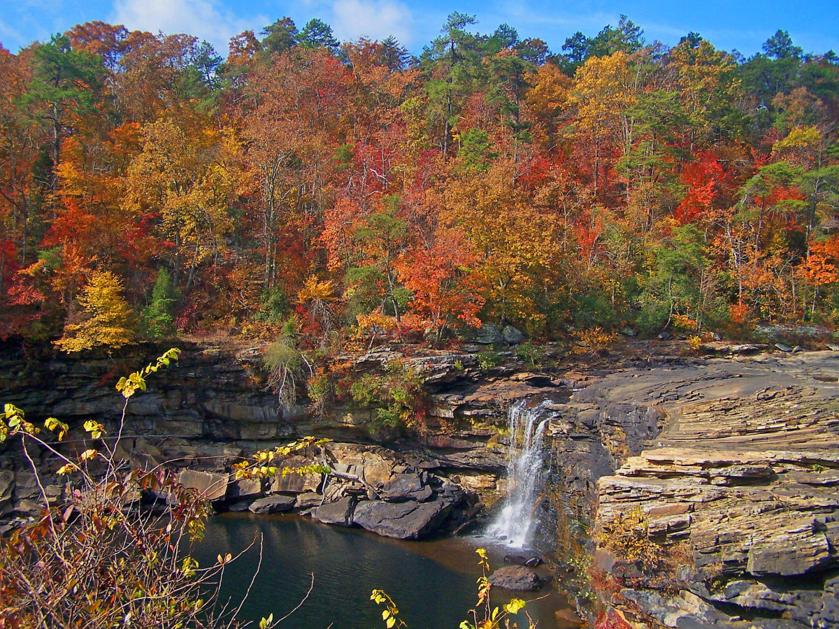 Little River Falls near DeSoto State Park