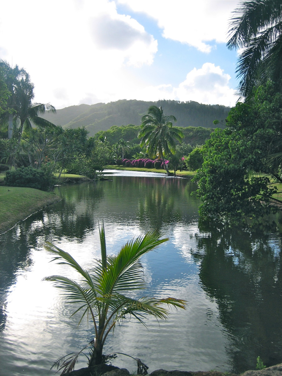 Lagoon on grounds of luau site