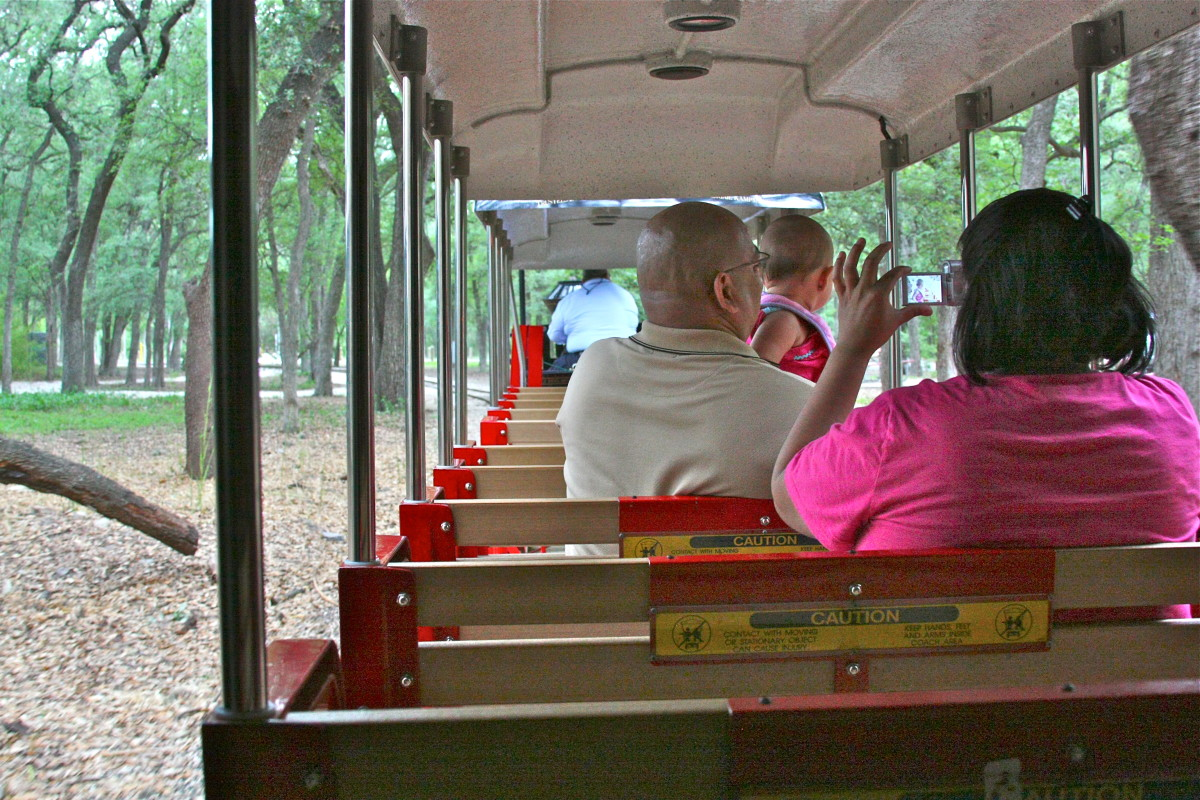 The mini-train ride through the zoo and around it's perimeter is a must-do for kids of all ages (yes, that means Mom & Dad, too!).