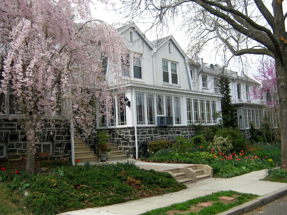 Baltimore rowhouses in Ednor Gardens