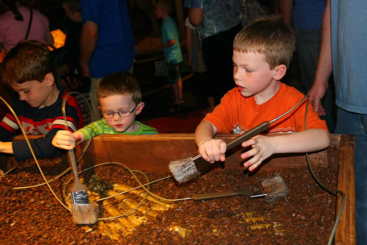 A small table with tools was set up for a mock dinosaur dig.