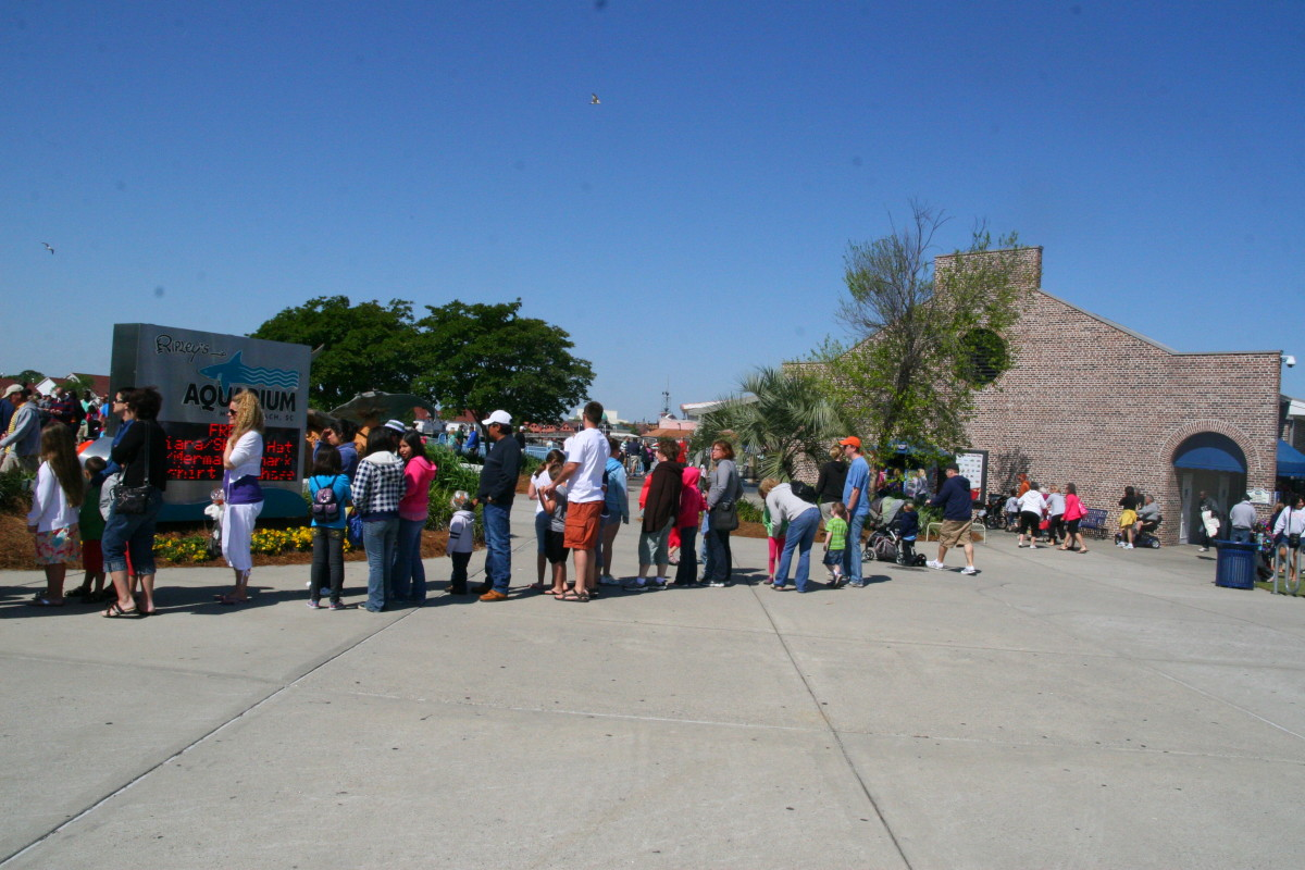 This line was not a line to buy tickets, but a second line to enter the aquarium. Waiting twice to simply enter the aquarium was frustrating.