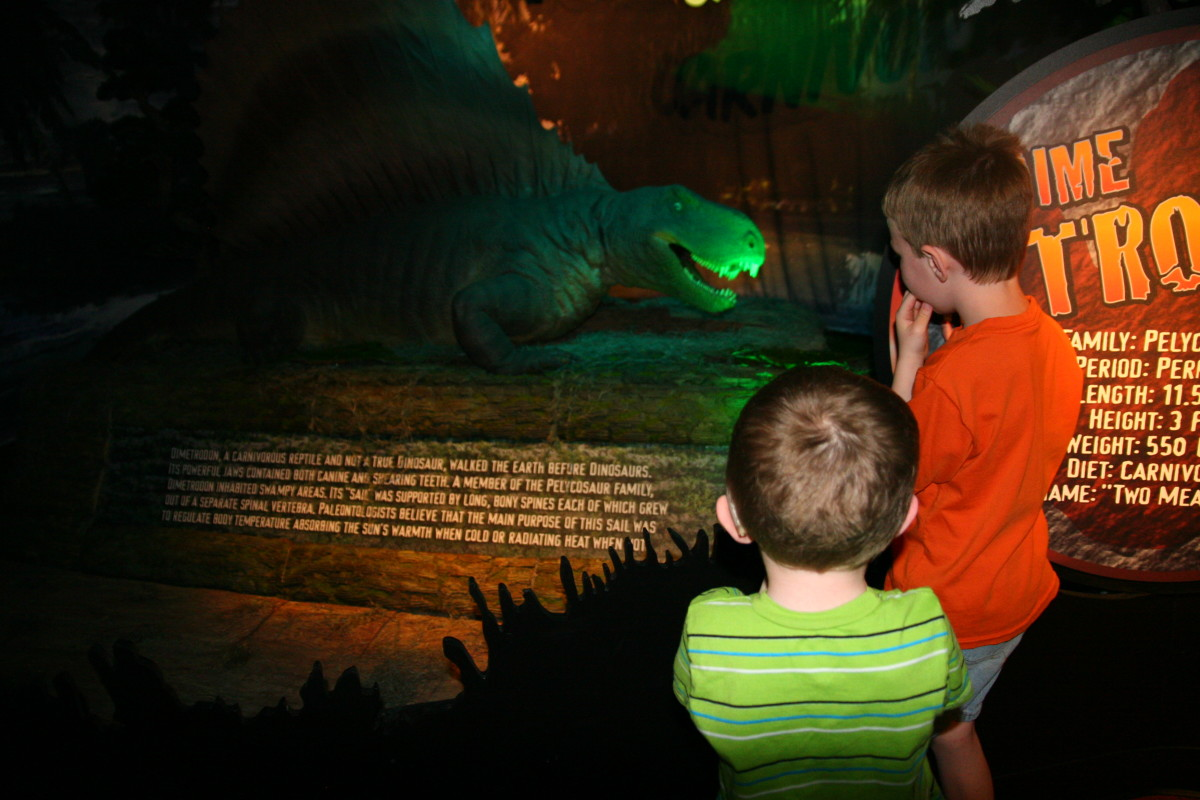 The dinosaurs were life-sized, and moved frequently. The boys loved this.