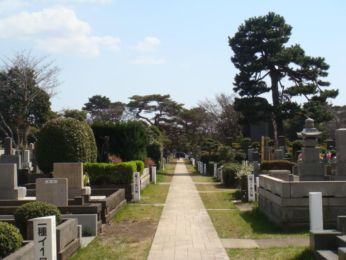 Aoyama Cemetery, on a fine Sunday morning