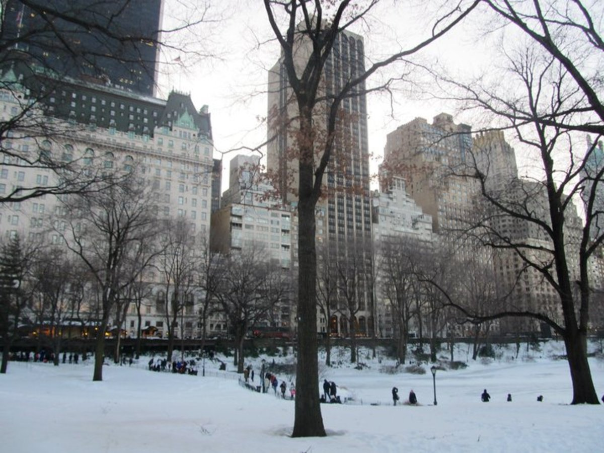 New York City during the winter months is worth the flight. Just remember the gloves!