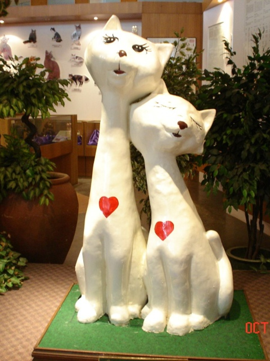Love cats at the entrance of the Cat Museum.