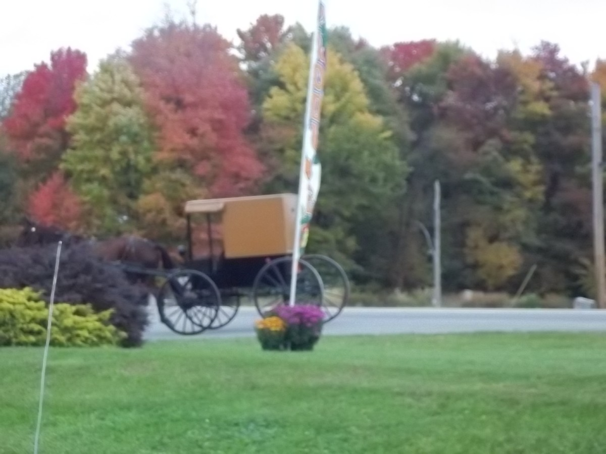 Amish Communities in Western Pennsylvania | WanderWisdom