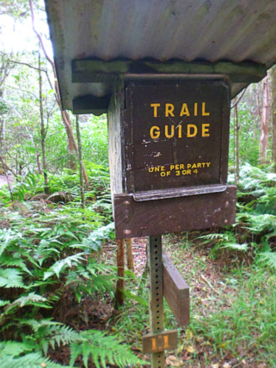 Take the guide book inside the box and put it back after your hike
