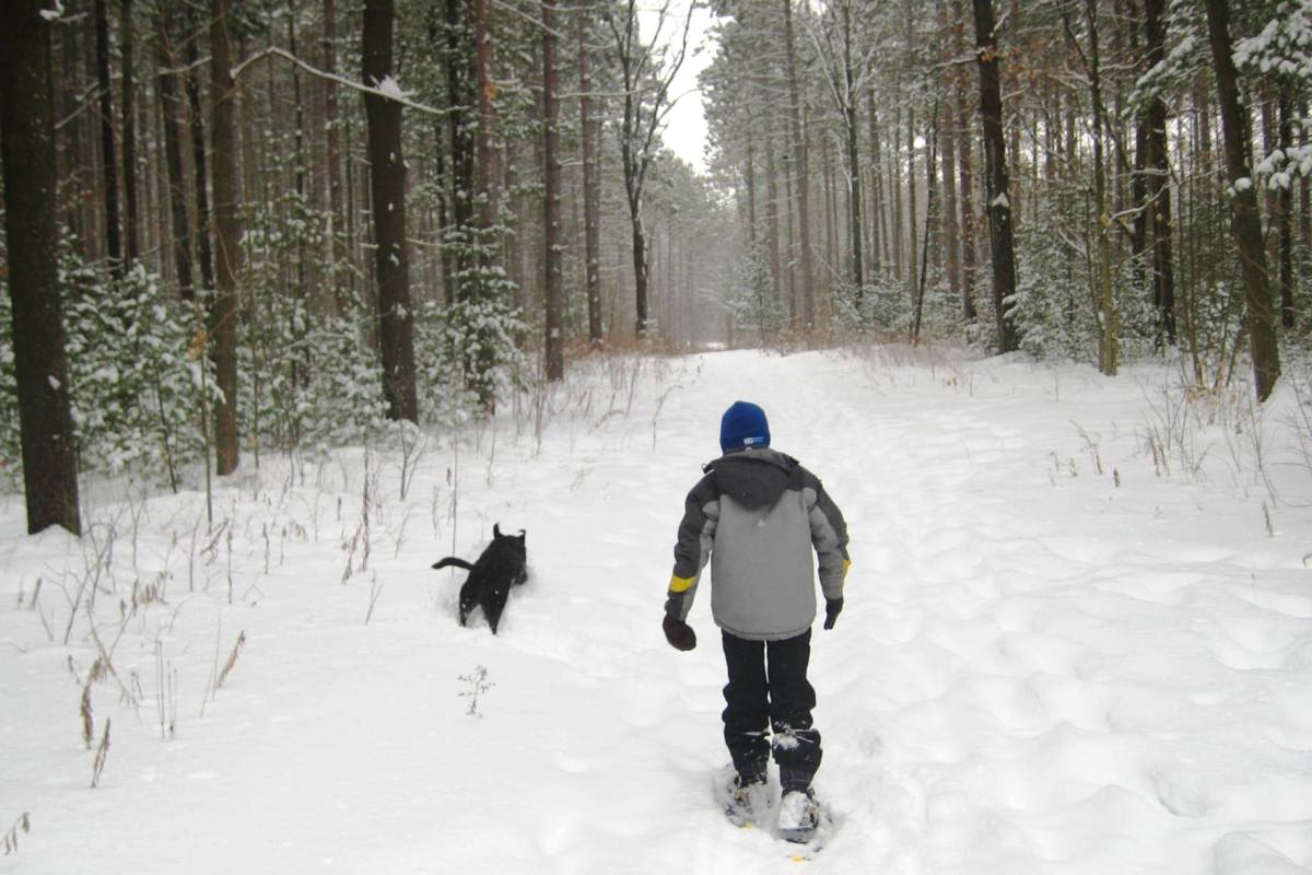Winter snowshoeing adventure.