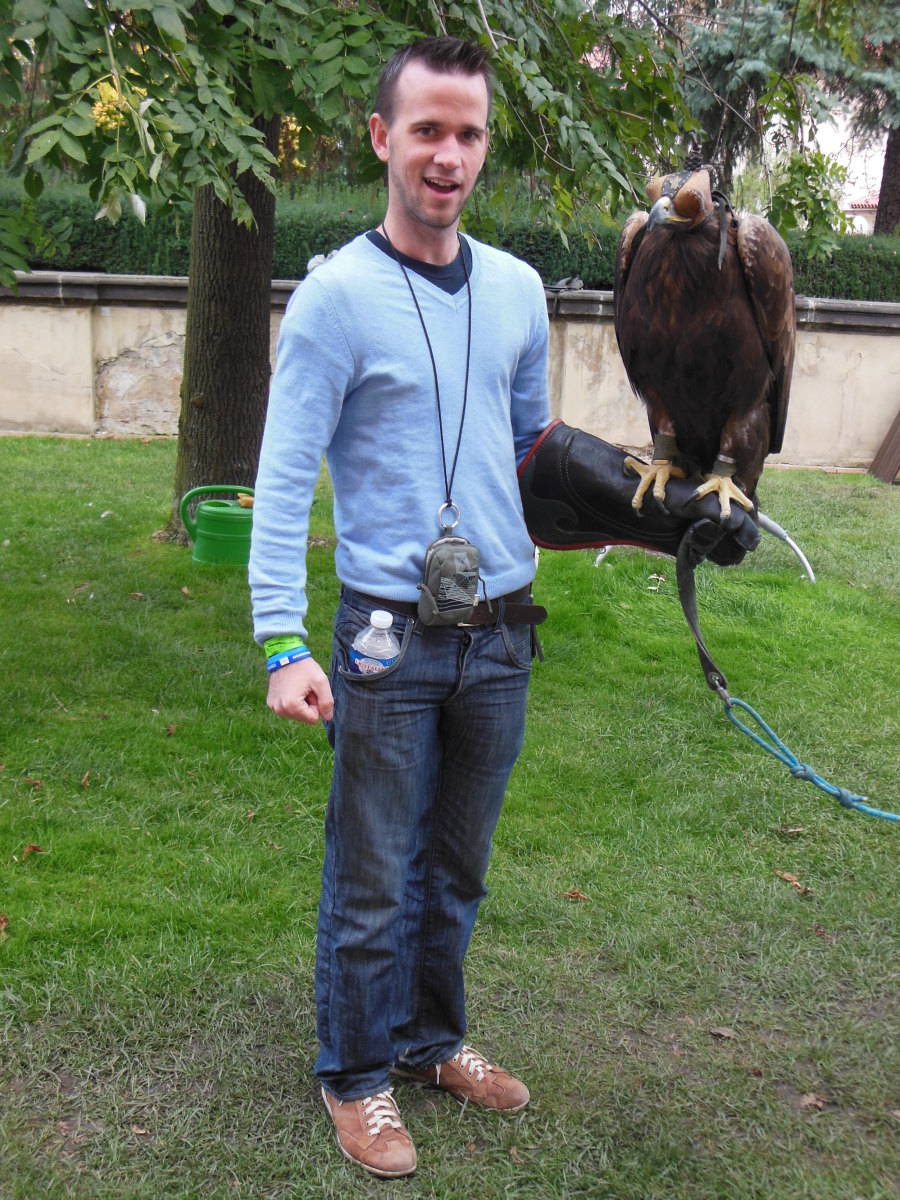 They let me hold an eagle in the castle gardens