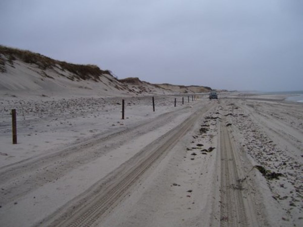 Sandy Neck (Without All the Cars)