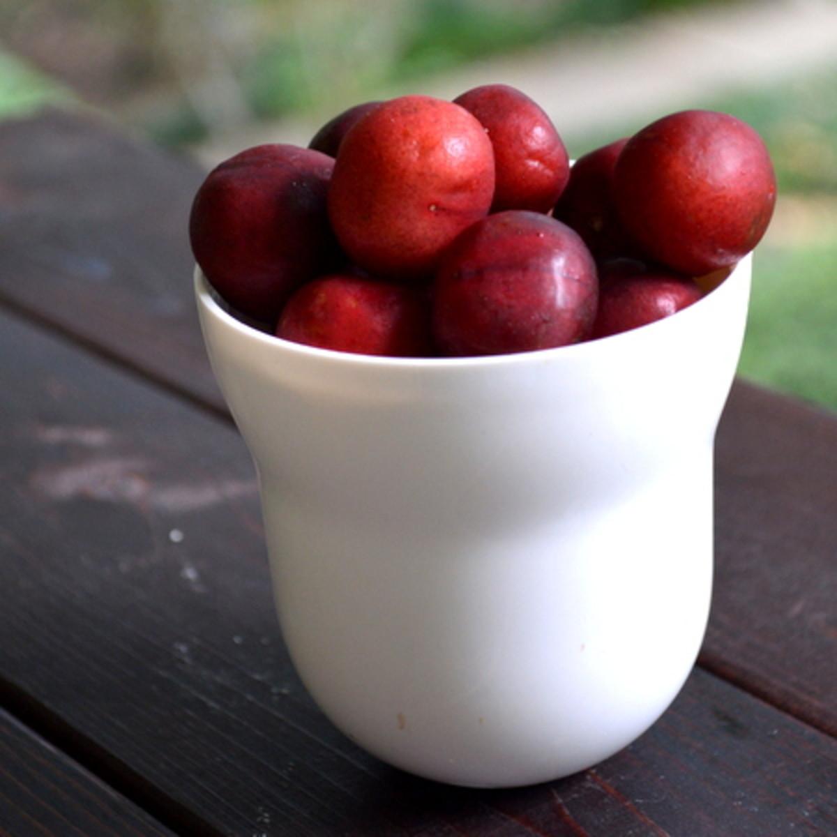 Eating plenty of fruit can help stave off jet lag.