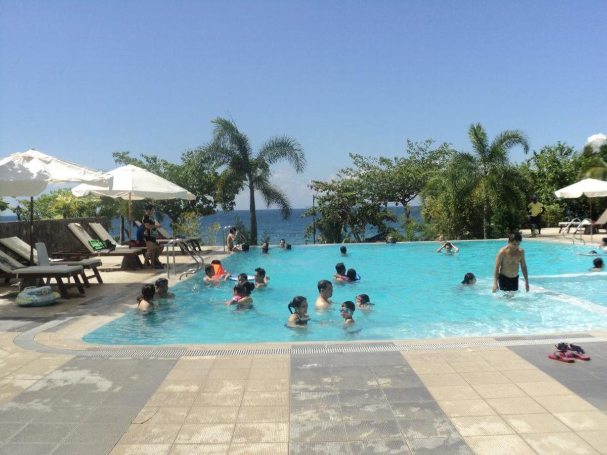 Palm Beach Resort's Infinity Pool