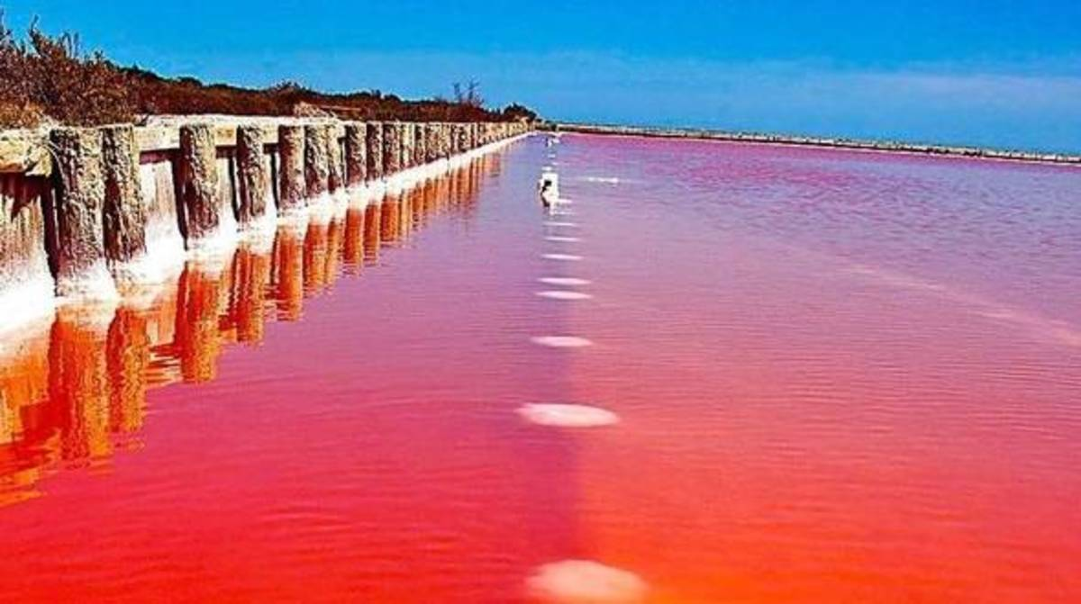 Red Lake in Camargue France