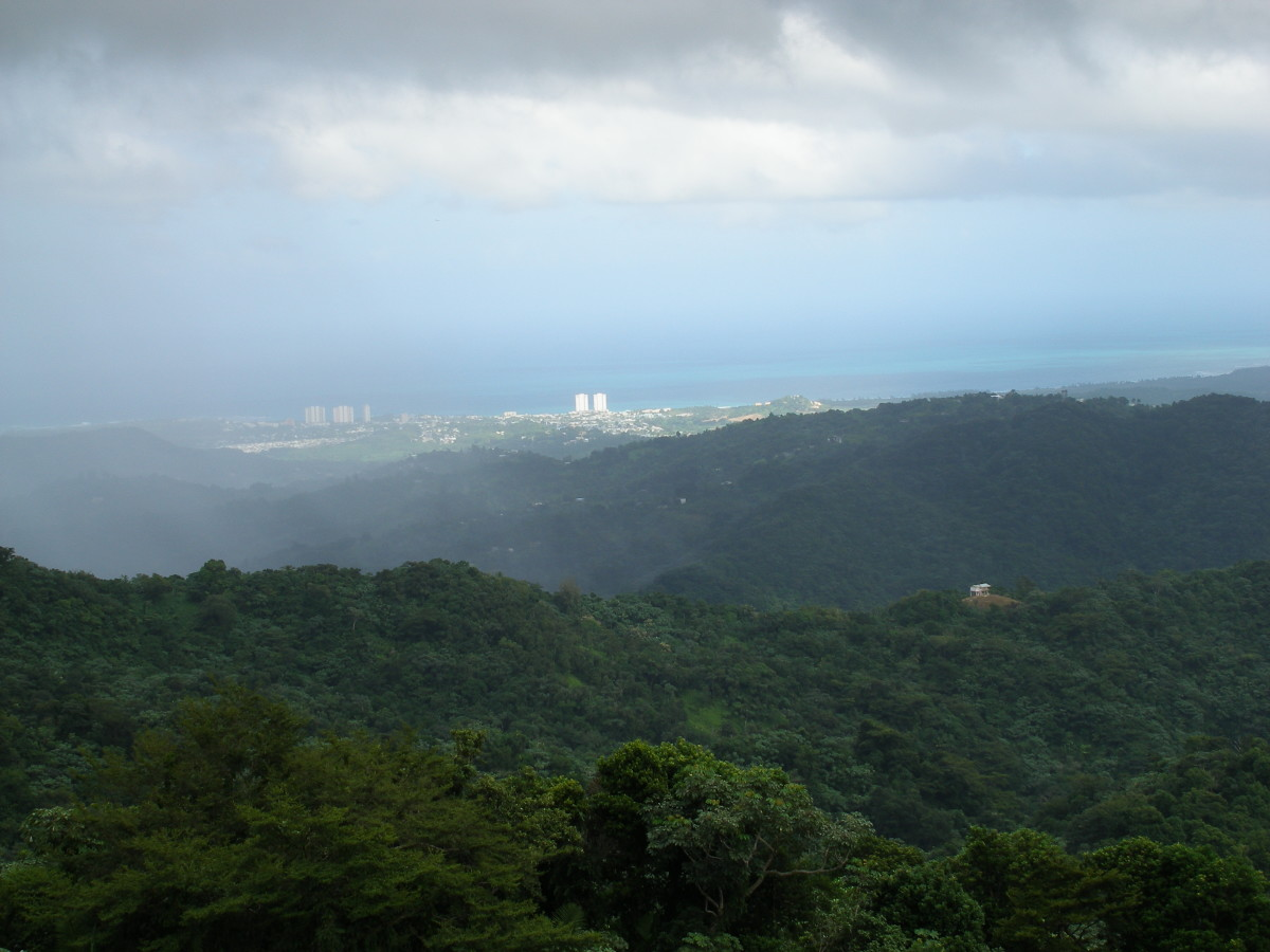 View from the top in El Yunque.  You can see clear to the ocean and the beachfront resorts!