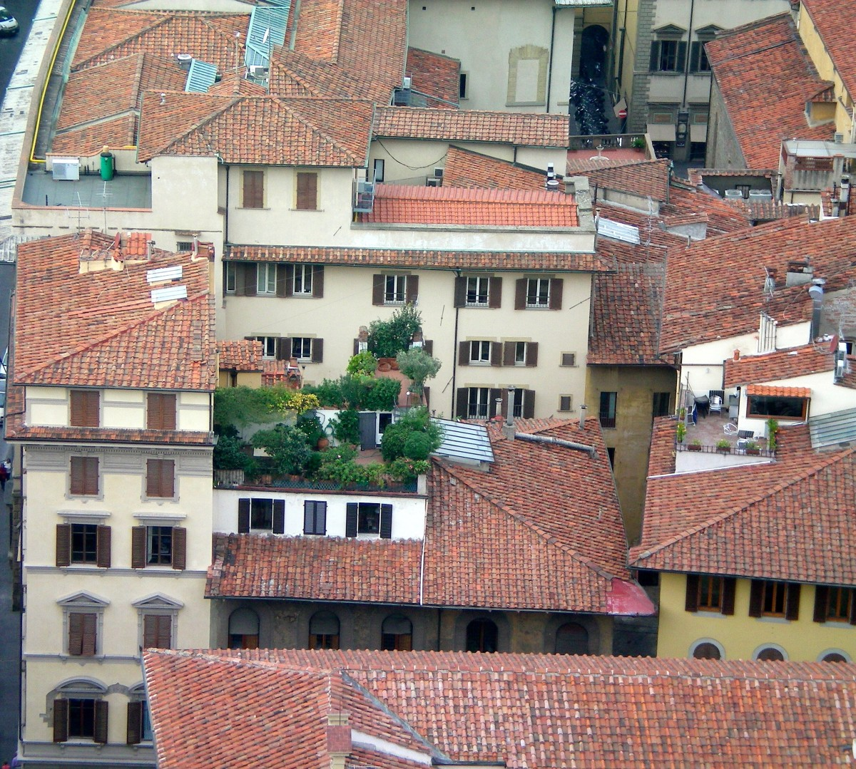 A garden amongst the roof-tops; fresh produce is everywhere in Florence (c) A. Harrison