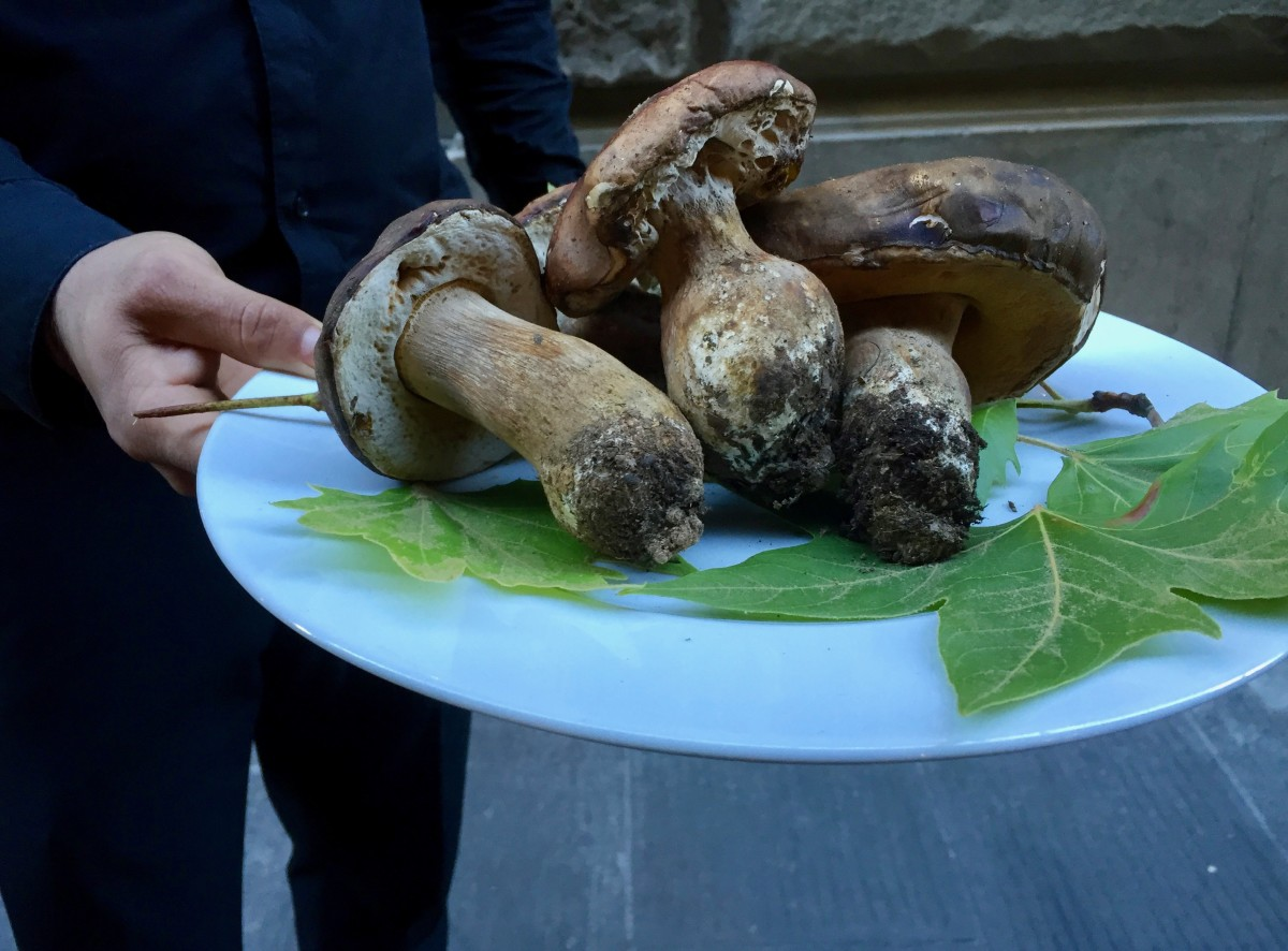 A waiter proudly displaying porcini mushrooms (c) A. Harrison